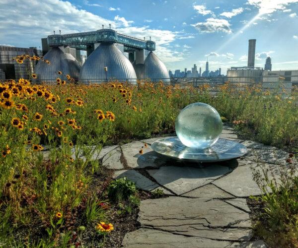 rooftop garden copy
